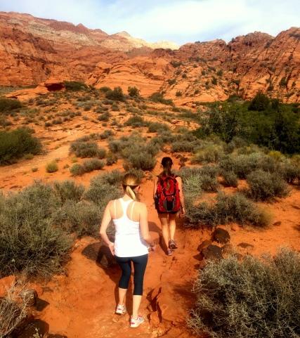 hike landscape
