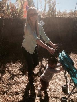 Stroll through the Corn Maze - Wheeler Farm
