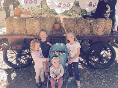 Gaggle of Girls at Wheeler Farms