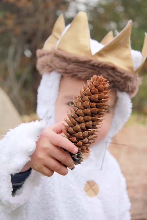 Three Whims: Where the Wild Things Are Halloween costume