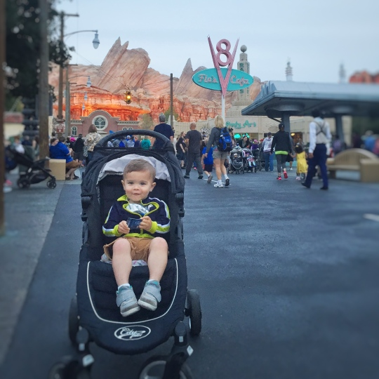 Three Whims: my Disneyland experience with City Stroller Rentals