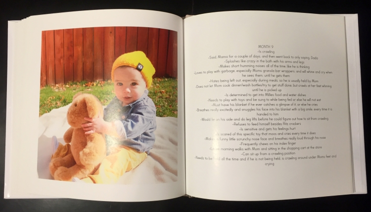 Three Whims: First year baby book - take pictures each month with the same stuffed animal to show growth and then give it to them on their first birthday